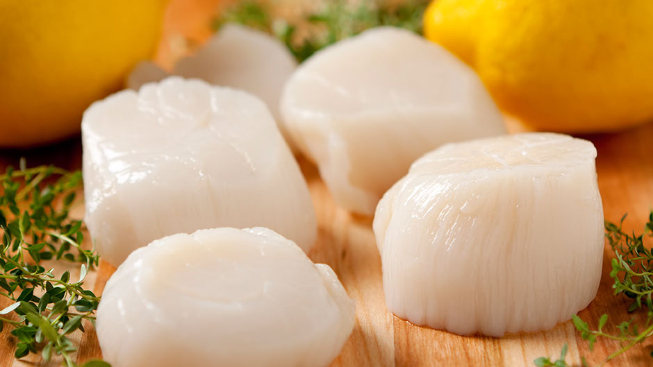 Prefectly sized scallops ready to eat.